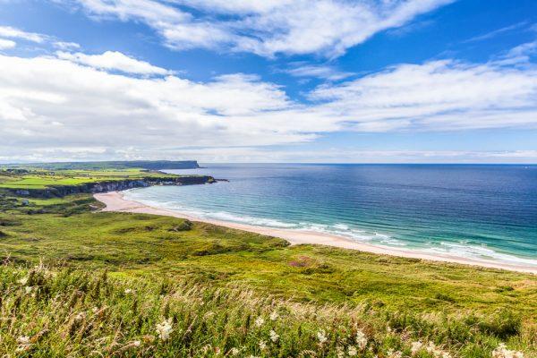 White Park , Antrim Coast, Northern Ireland.